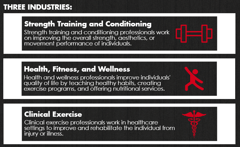 What can you do with a degree in Exercise and Movement Science?